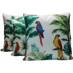 copy of Coussin palm...